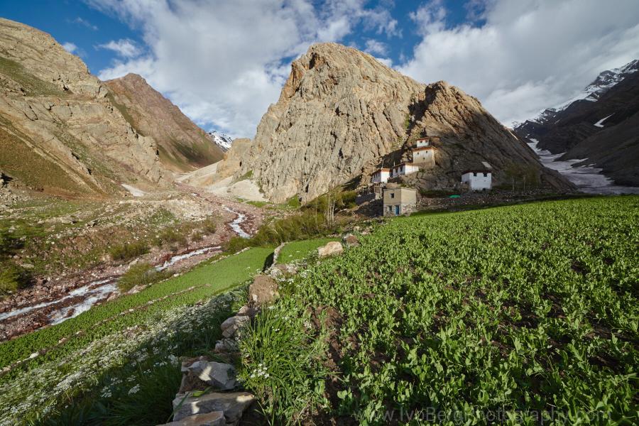 Himalayas - Landscape 3