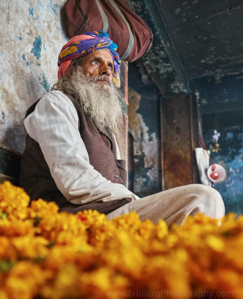Old man Jaipur 2