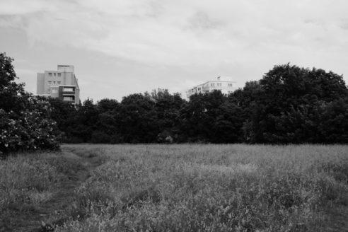 #36 – Falkenhagener Feld